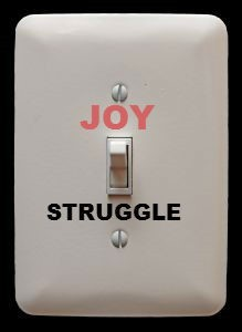 joy switch